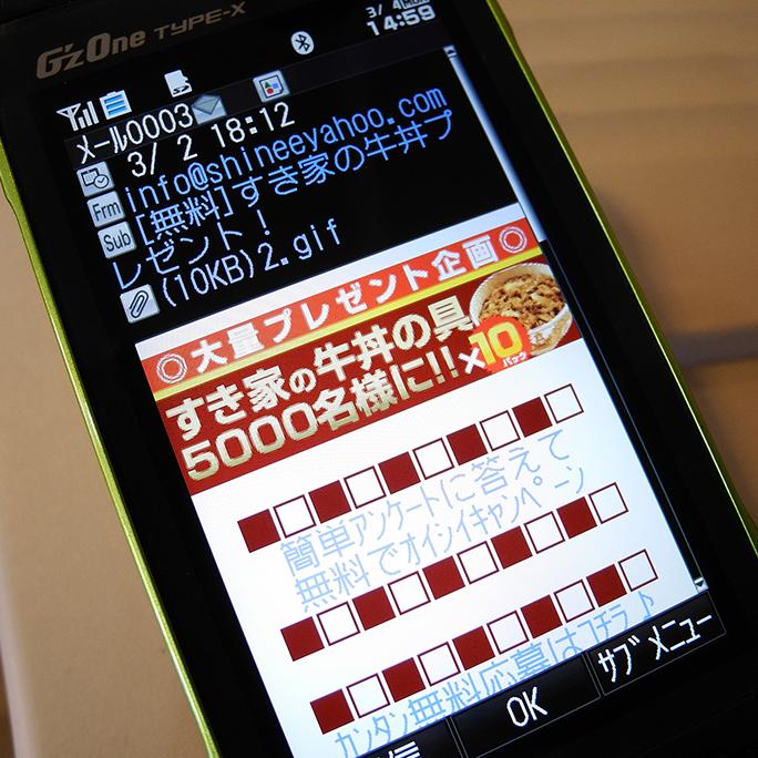 Y117_3.jpg