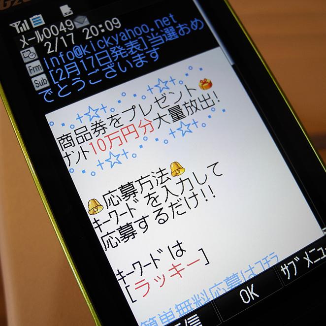 Y117_9.jpg